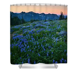 Tatoosh Sunrise Shower Curtain by Mike  Dawson