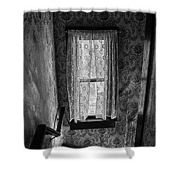 The Hiding Artist Shower Curtain by Jerry Cordeiro