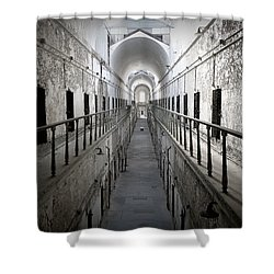 The Walk Shower Curtain by Richard Reeve