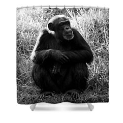 Thinking Shower Curtain by David Lee Thompson