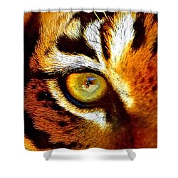 Tigers Eye Shower Curtain by Marlo Horne