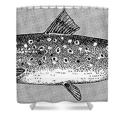 Trout Shower Curtain by Granger