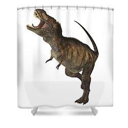 Tyrannosaurus Rex Shower Curtain by Corey Ford