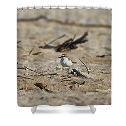 Wading Bird Shower Curtain by Douglas Barnard