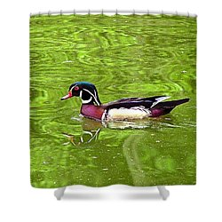 Water Wood Duck Shower Curtain