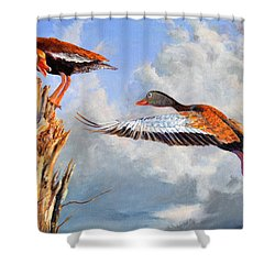 Shower Curtain featuring the painting What Are You Whistling At by AnnaJo Vahle