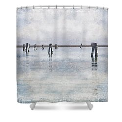 wood piles in the lagoon of Venice Shower Curtain by Joana Kruse