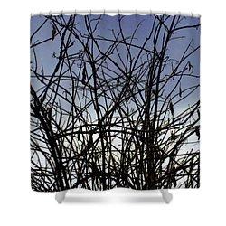Yet To Spring Shower Curtain by Sumit Mehndiratta