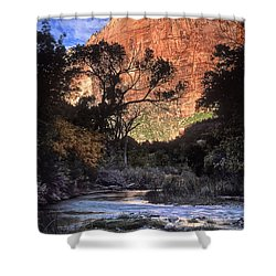 Zion National Park View Shower Curtain by Dave Mills