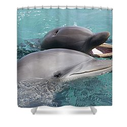 Atlantic Bottlenose Dolphins Shower Curtain by Dave Fleetham