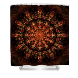 12 Point Kaleido Shower Curtain by Richard Ortolano