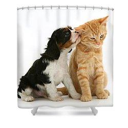 Puppy And Kitten Shower Curtain by Jane Burton