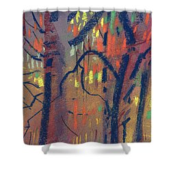 Shower Curtain featuring the painting Autumn Color by Donald Maier