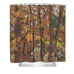 Shower Curtain featuring the painting Autumn Gold by Donald Maier
