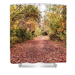 Autumn Trail Shower Curtain by Rick Friedle