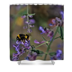 Shower Curtain featuring the photograph Bee by David Gleeson