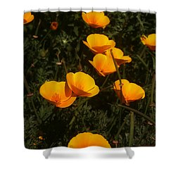 Big Sur California Shower Curtain