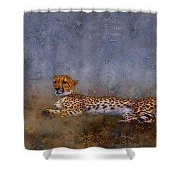 Cheetah Shower Curtain by Ron Jones