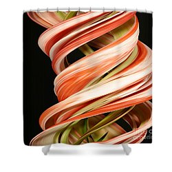 Digital Streak Image Of Amaryllis Shower Curtain by Ted Kinsman