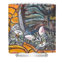 Dos Gatos Shower Curtain by Carolyn Donnell