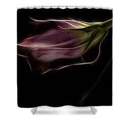 Flower Shower Curtain by Stelios Kleanthous