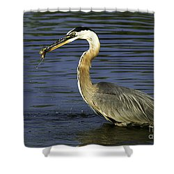 Shower Curtain featuring the photograph 2 For 1 Dinner Special by Clayton Bruster
