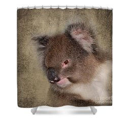 Koala Shower Curtain by Louise Heusinkveld