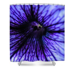 Shower Curtain featuring the photograph Look Within by Tiffany Erdman