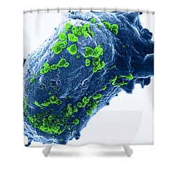 Lymphocyte With Hiv Cluster Shower Curtain by Science Source