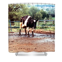 Mad Cow Disease Shower Curtain by Science Source