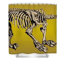Megatherium, Extinct Ground Sloth Shower Curtain by Science Source