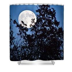 Moon Night Shower Curtain by Jiayin Ma