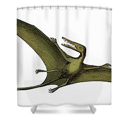 Pterodactyl Extinct Flying Reptile Shower Curtain by Science Source