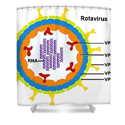 Rotavirus Shower Curtain by Science Source