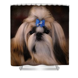 Shih Tzu Shower Curtain by Jai Johnson