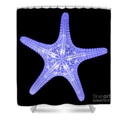 Starfish Shower Curtain by Ted Kinsman