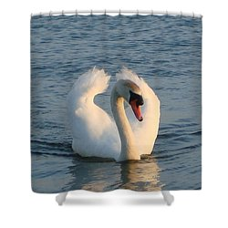 Shower Curtain featuring the photograph Swan by Katy Mei