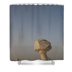 The Strange Eroded Formations Shower Curtain by Taylor S. Kennedy