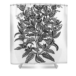 Turkey Balm Shower Curtain by Science Source
