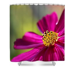 Shower Curtain featuring the photograph Yellow Dots by Henrik Lehnerer