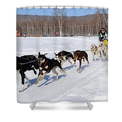 2010 Limited North American Sled Dog Race Shower Curtain by Gary Whitton