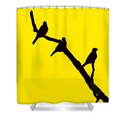 3 Birds On A Limb Shower Curtain