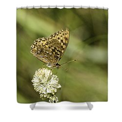 Shower Curtain featuring the photograph Butterfly by Betty Depee