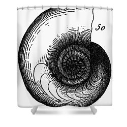 Fossil: Jurassic Period Shower Curtain by Granger