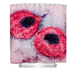 Hiv Shower Curtain by Science Source