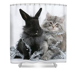 Kitten And Rabbit Getting Into Tinsel Shower Curtain by Mark Taylor