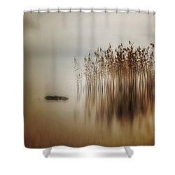 Reed Shower Curtain by Joana Kruse