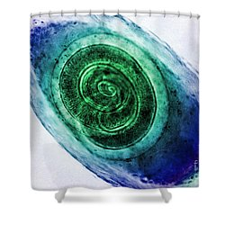 Trichinella In Muscle Lm Shower Curtain by Omikron