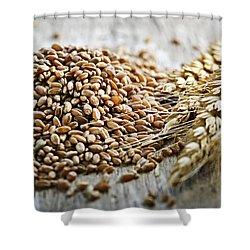 Wheat Ears And Grain Shower Curtain by Elena Elisseeva