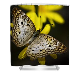 White Peacock Butterfly  Shower Curtain by Saija  Lehtonen